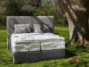 ROGER CHARLES Alpha Bed