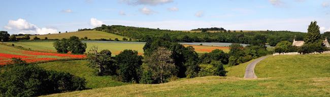 Vista of Dartmoor